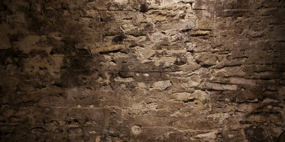 damp wall of cellar or crawlspace