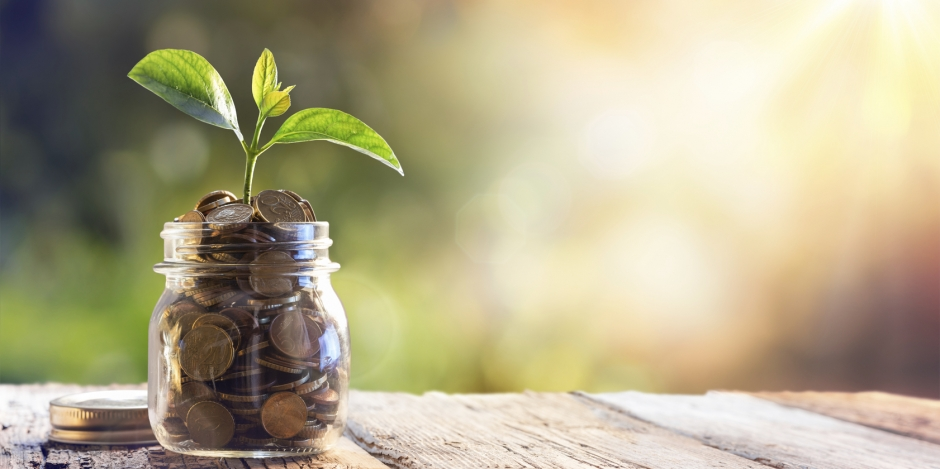 Financing Energy Efficiency Concept with a Plant Growing from Jar of Coins